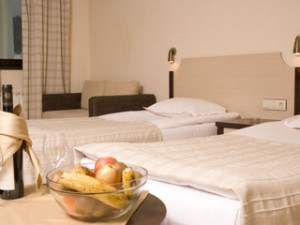 rodopihomehotel_staia