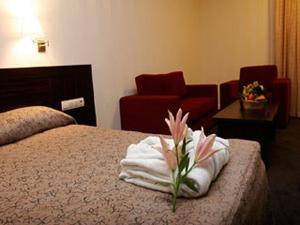 silverhousehotel_staia