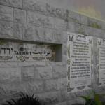 israel-yardenit-rekayordan